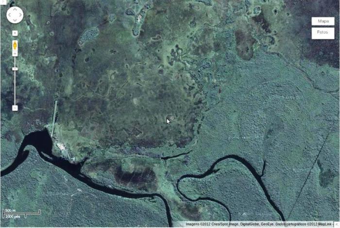 FIGURA 04 - Paisagem característica do Pantanal Mato-grossense, localizada em Capinzal- MS