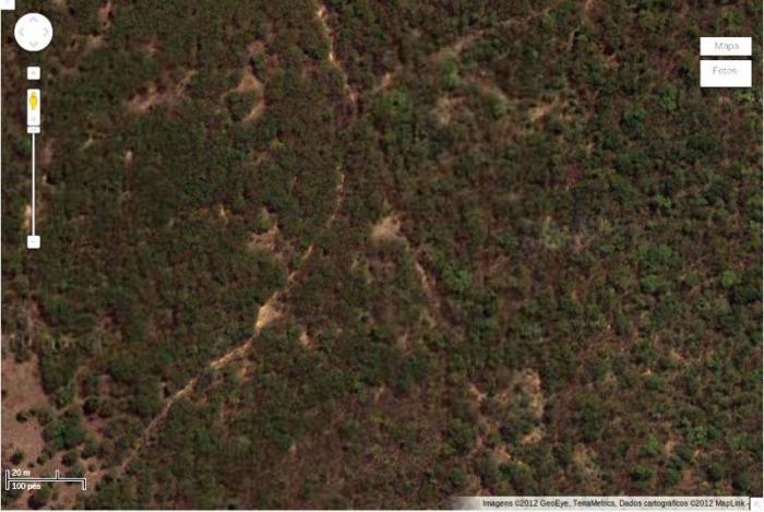 FIGURA 05- Paisagem característica de  Caatinga localizada em Mossoró-RN