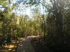 Trilhas no interior do Parque Municipal Gruta da Bacaetava