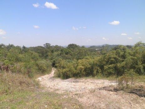 Vista parcial no cume do Morro da Cruz